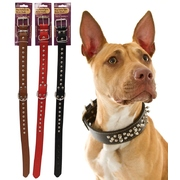 Dog Collar With Metal Studs 60cm x 3cm