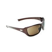 Pro Choice X Series Safety Specs Brown