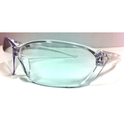 Pro Choice Richter Safety Glasses Clear Anti Scratch Anti Fog