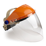 Pro Choice Assembled Browguard & Clear Visor