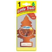 Little Trees Air Freshener Copper Canyon